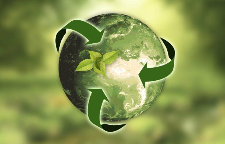 Recyclage en entreprise: 4 étapes pour améliorer concrètement le tri sélectif dans vos locaux