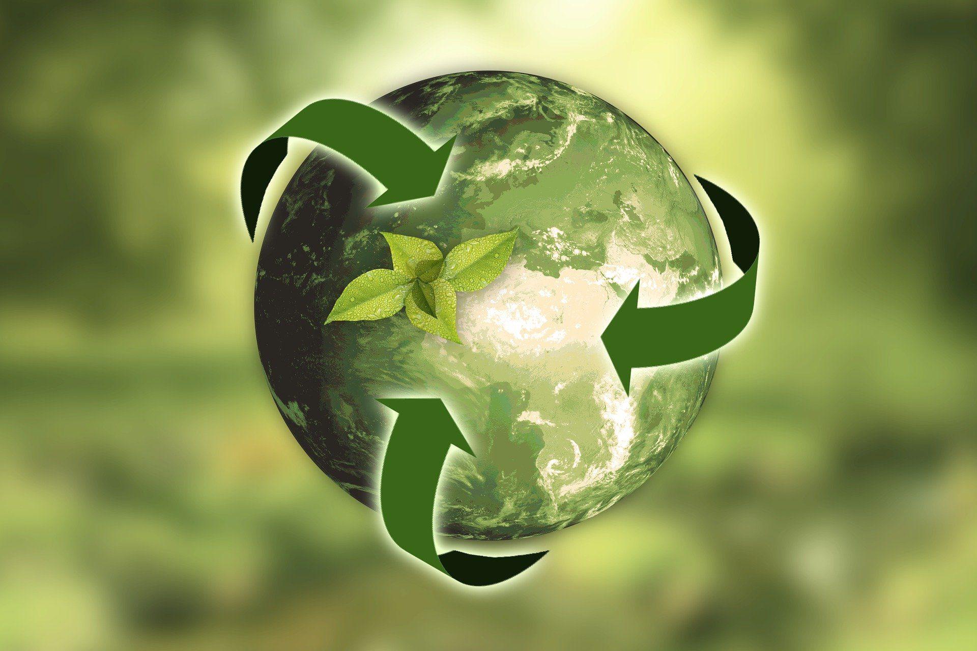 recyclage-entreprise-améliorer-tri-selectif